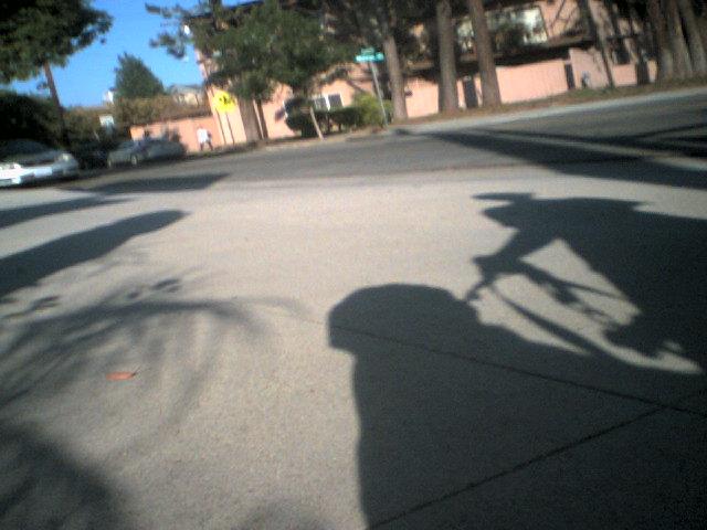 Walking with my peeps